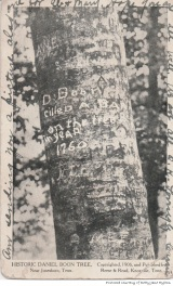"""The """"Boone Tree"""" said to have been carved by Daniel Boone during one of his treks through our area."""