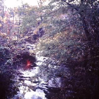 Daniel Boone falls