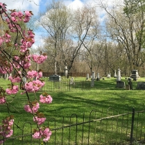 Rocky Hill Cemetery, Jonesborough - Spring 2020 2