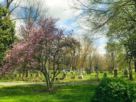 Rocky Hill Cemetery in the spring